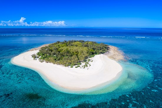 Wilson Island Bewertungen Fotos Preisvergleich Australien Tripadvisor