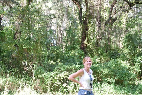 Interlachen, FL: Walking in the forest and loving the peace and quiet.