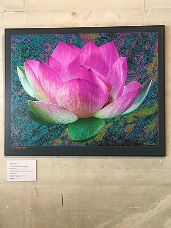 S Coffeyville, OK: Stunning Artwork displayed for purchase