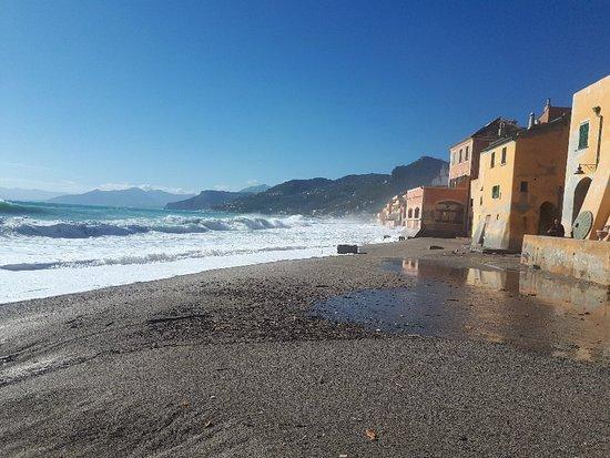 Albatros Beach