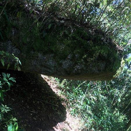 Серра-да-Мантикейра: Pico da onça