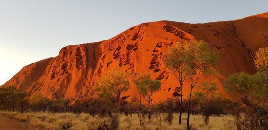 Balade à Uluru au lever du soleil comprenant le petit-déjeuner Photo