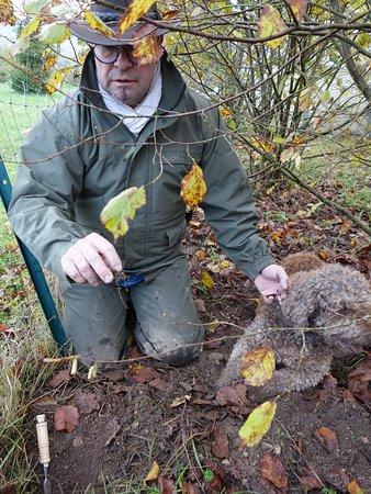 Burey-en-Vaux, فرنسا: A la recherche des truffes avec le chien Einstein et son maître Pascal