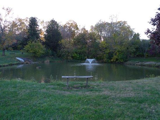 In West Milton Park, catch & release pond