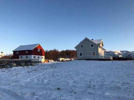 Lyngen Municipality Foto