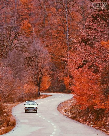 Mazandaran Province, Iran: Mazandaran,iran👑