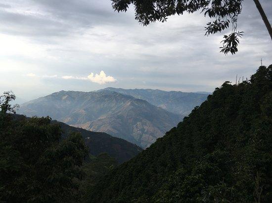 zone café Aguadas, Caldas, Colombie