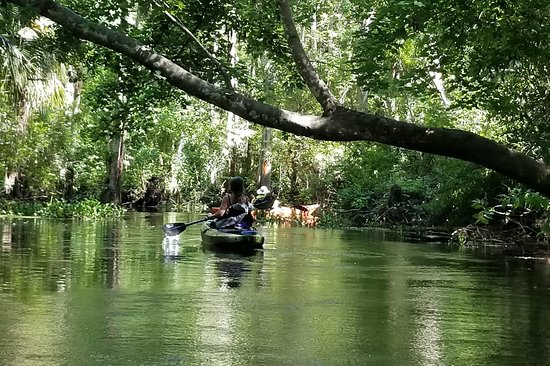 Florida Kayaking Tours and Adventures