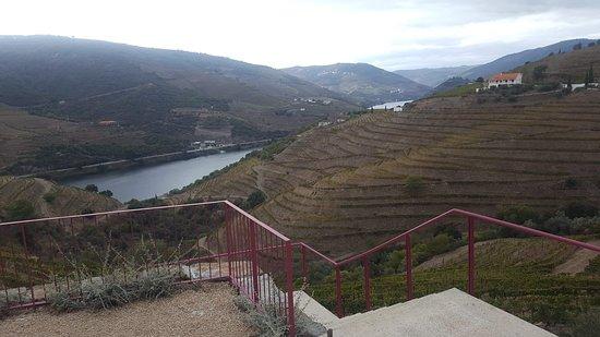 Quinta Nova, Portugal: Belas paisagens