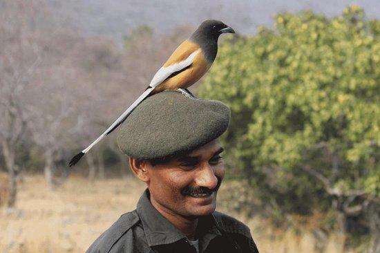 Escape to the Wild Birding and Wildlife Tours