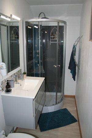 Thelus, Francia: salle de bain avec cabine de douche