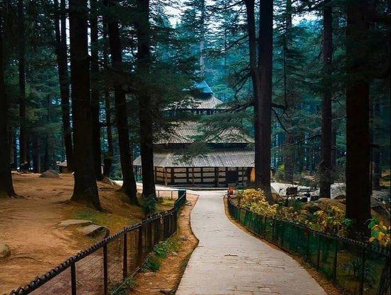 Katrain, Индия: Hadimba Temple Manali