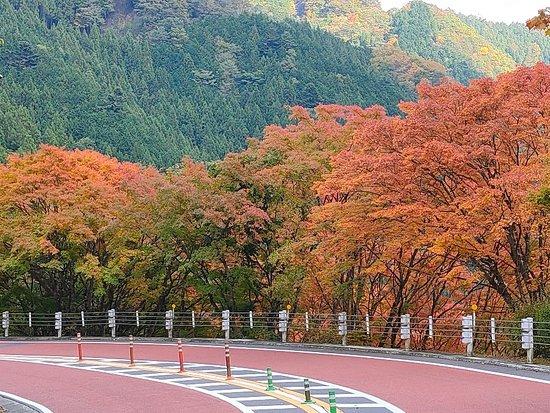 Okutama Shuyu Road