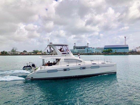 Elegance Catamaran Cruises Bridgetown 2019 All You