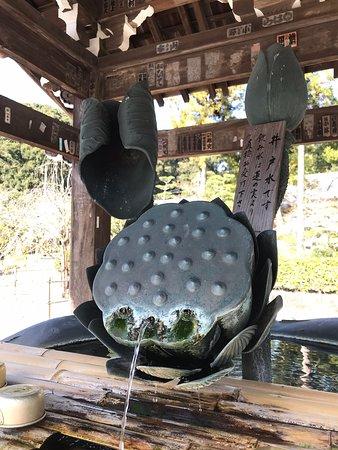 Kokawadera Temple Εικόνα