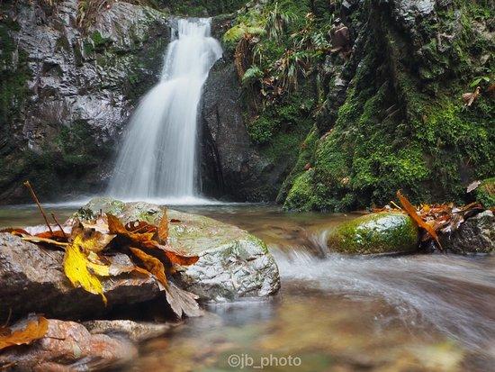 Edelfrauengrab-Wasserfaelle