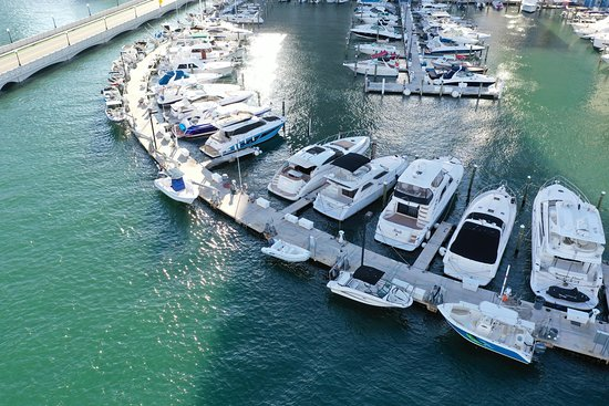 Miami Party Yacht Rental