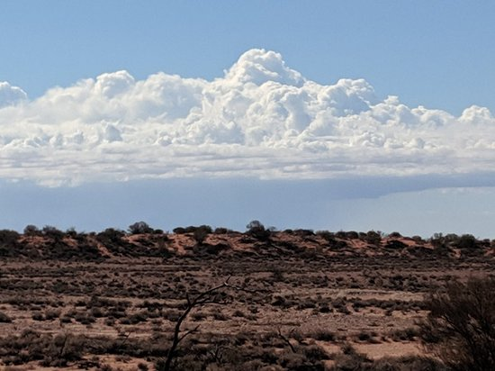 Andamooka, Úc: Lake Torrens - Desert park
