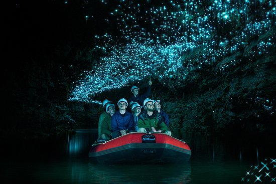 Thermal Shuttle - Waitomo Tours (from/to Rotorua)