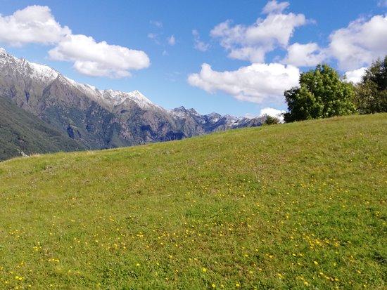 linee divergenti all'alpe di Paglio/pian delle Betulle