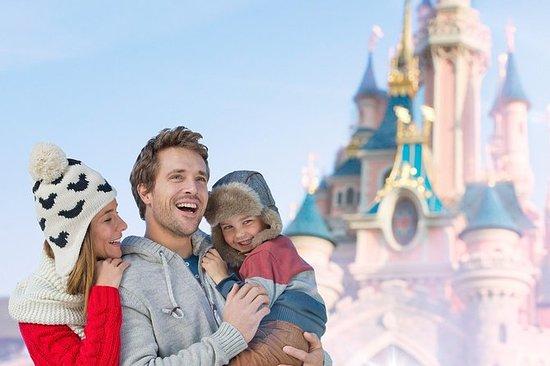 Biglietto da 1 giorno a Disneyland