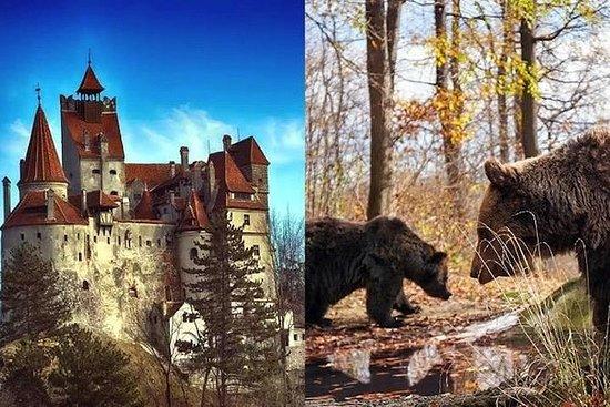 Bran (Dracula) slott, Bear Sanctuary ...