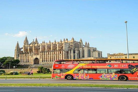 马略卡岛:帕尔马随上随下最佳巴士游览