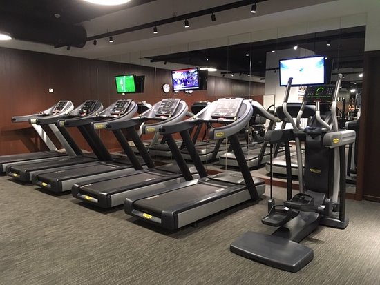 Four new treadmills.  There are also a couple of Ellipticals.