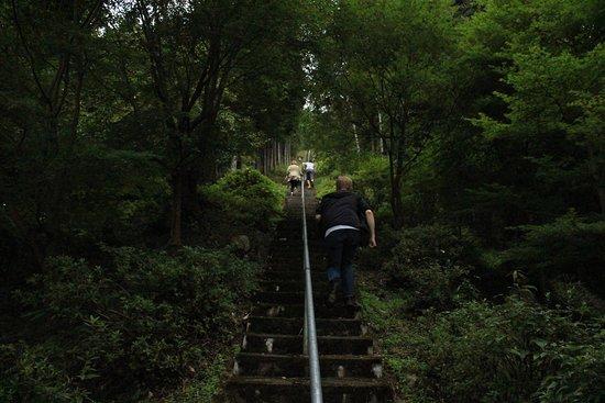 Tatsuiwa Shrine