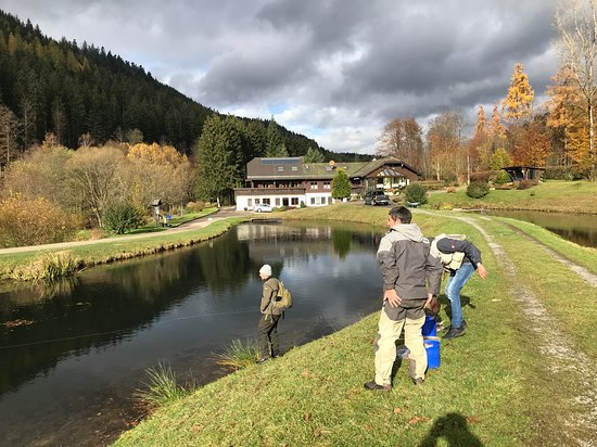 Neuweiler, Tyskland: Wunderschöne Teiche in einer fantastischen  Landschaft