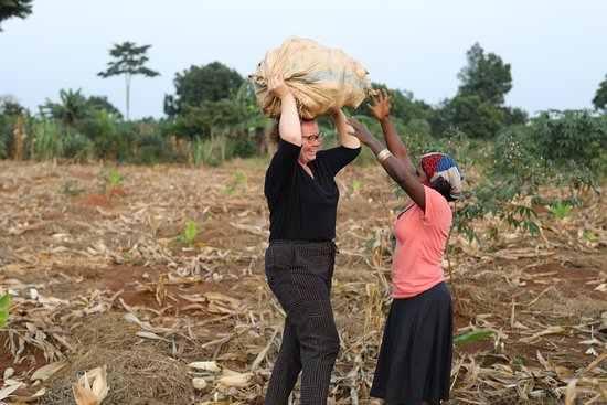 Mpigi, Уганда: Volunteer carrying harvests from the garden.