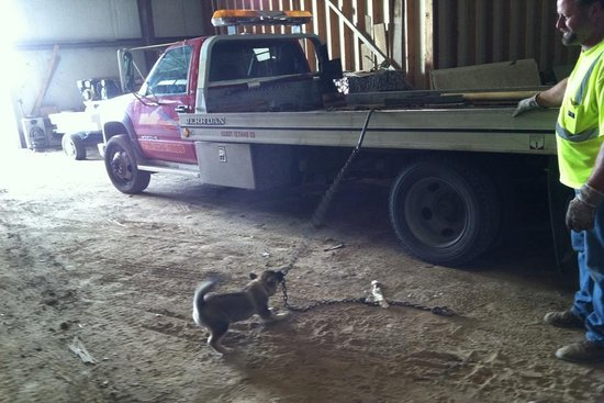Andy Woller Towing