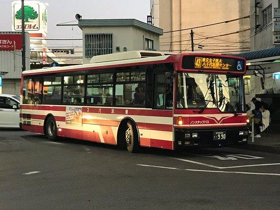Toyo Bus