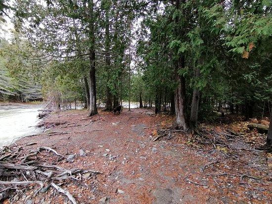 Pete's Dam Trail
