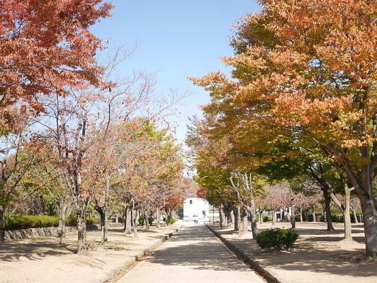 Senhime Botan Garden