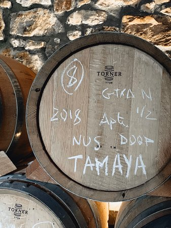 Bellmunt de Priorat, España: Visita y degustación de vinos en Mas de'n Gil, excelente bodega en la región de Priorat. Ideal para amantes del vino que quieren descubrir esta región y aprender catando vinos de muy buena calidad.