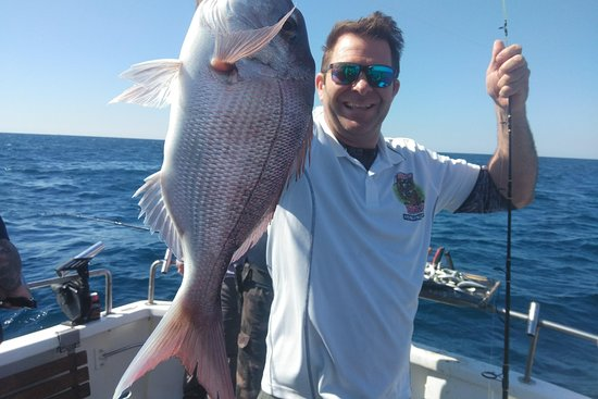 Top Gear Fishing Charters