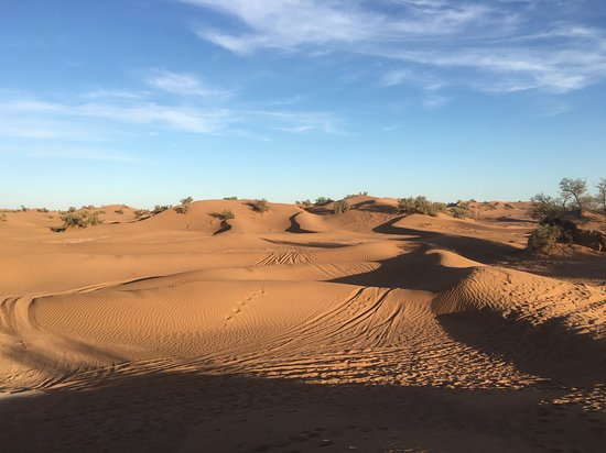 Desert Majesty: Dans le désert ...