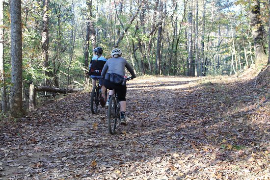 Panther Creek State Park (Morristown) - 2020 All You Need to Know BEFORE You Go (with Photos) - Tripadvisor