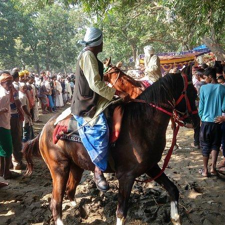 Sonepur, Indie: #Sonpurmela2019 #SonpurCattleFair