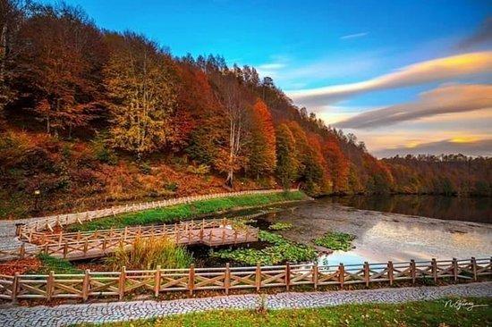 Ulugol Tabiat Parki: Ulugöl Tabiat Parkı