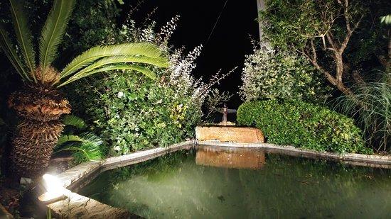 Il Ginepro : Tra ulivi e fontane