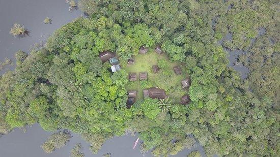 Deck Laguna Grande - Picture of Cuyabeno Lodge - Laguna Grande, Cuyabeno Wildlife Reserve - Tripadvisor