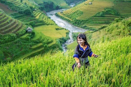 Vietnam Premium Tours