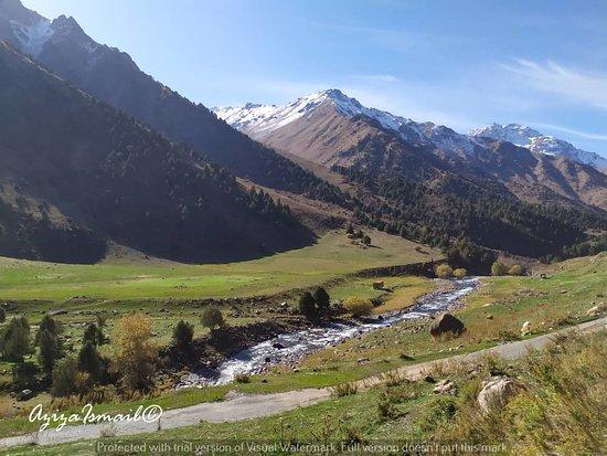 Chychkan State Reserve, Kirguistán: Chychkan Gorge