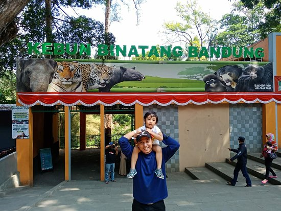 Bandung Zoo 2020 All You Need To Know Before You Go With