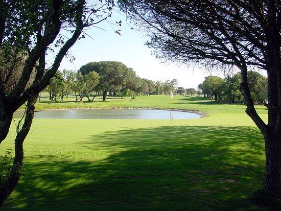 Golf Academy Novo Sancti Petri