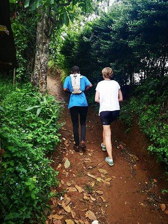 Hike to coffee plantation
