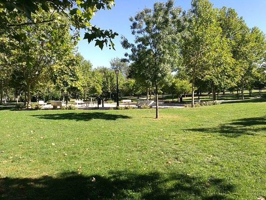 Parque de la Laguna del Carrizal