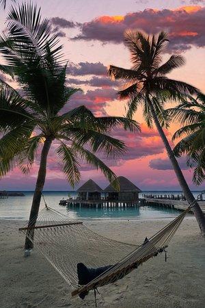 Halaveli Island: Sunset vibes &palms in Maldives ✨🌅🌅🌴✨ at Constance Halaveli Resort  #trueindianocean #constancehotels #constancehalaveli #dotzsoh